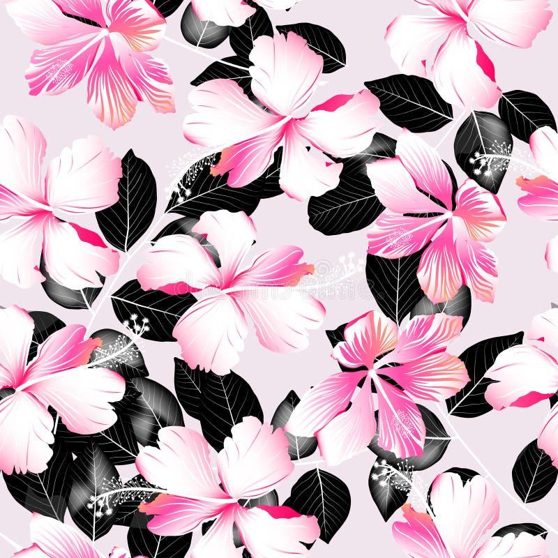 热带木槿开花与黑叶子无缝的样式 向量例证
