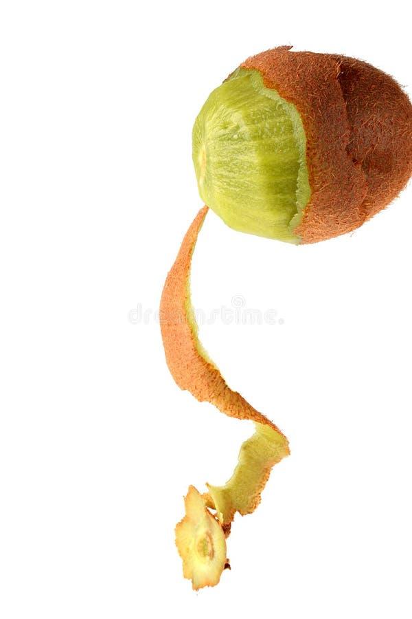 热带果子的猕猴桃 免版税图库摄影