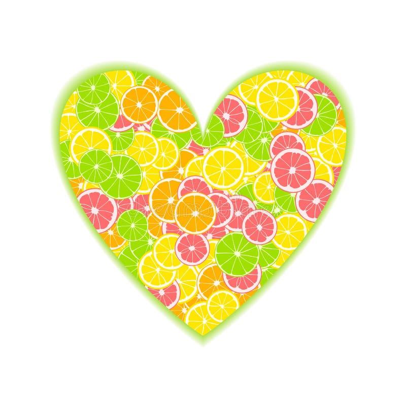 热带柑橘心脏 夏天印刷品组成由黄色柠檬、绿色石灰、粉红色葡萄柚和桔子与绿色阴影在白色ba 库存例证