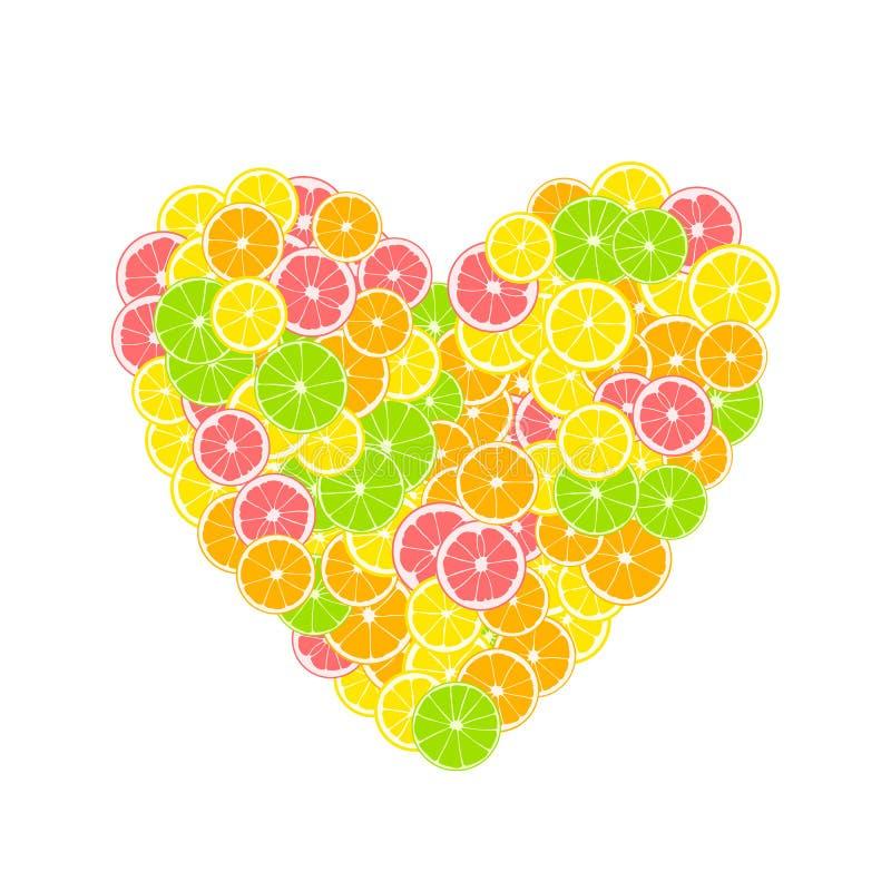 热带柑橘心脏 夏天印刷品组成由黄色柠檬、绿色石灰、粉红色葡萄柚和桔子在白色背景 库存例证
