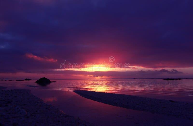 热带桃红色的日落 库存图片