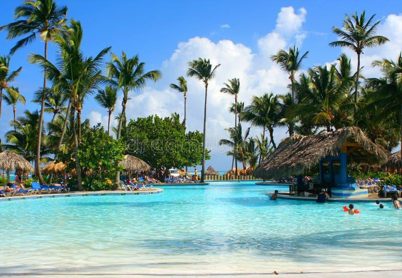 热带棒的池 免版税图库摄影
