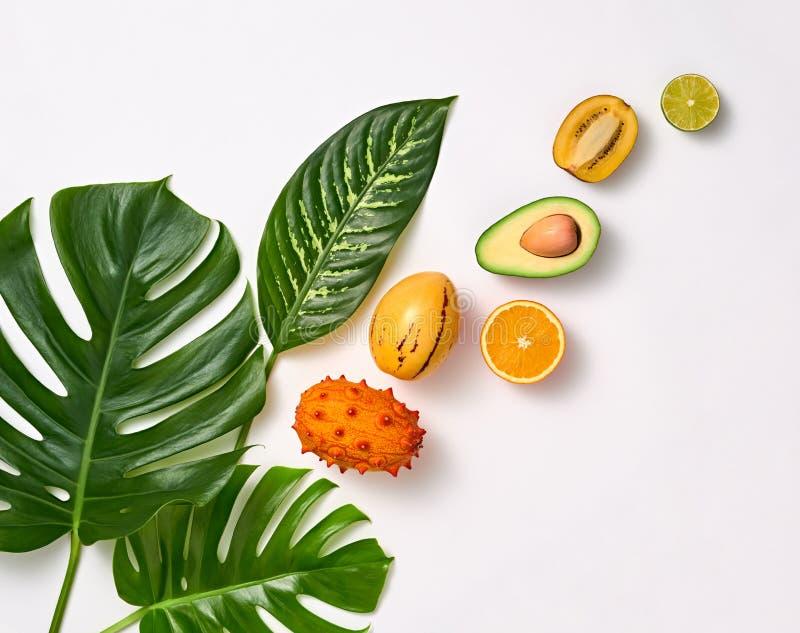 热带棕榈叶和新鲜水果 夏天集合 图库摄影