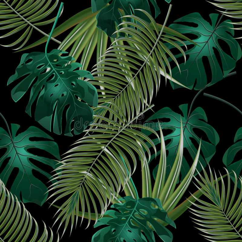 热带棕榈叶密林丛林  无缝花卉的模式 查出在黑色背景 例证 向量例证