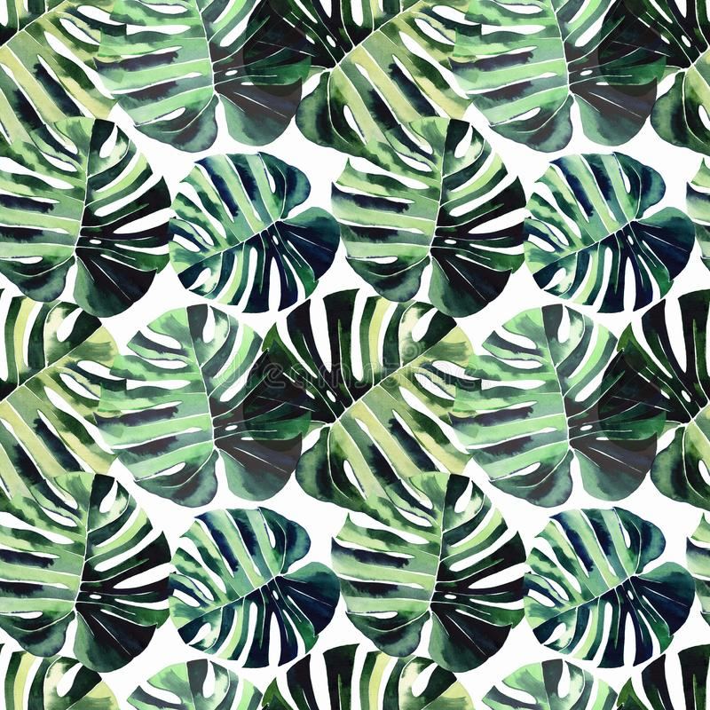 热带棕榈叶水彩的明亮的美好的绿色草本热带美妙的夏威夷花卉夏天样式 向量例证