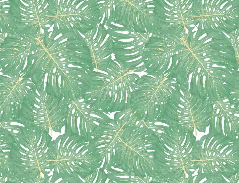热带棕榈叶,密林离开无缝的花卉样式背景 库存例证