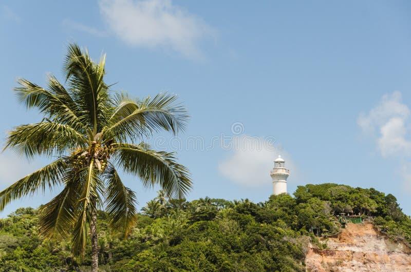 热带棕榈和著名灯塔美丽的景色在Morro de圣保罗海岛,巴西 免版税库存照片