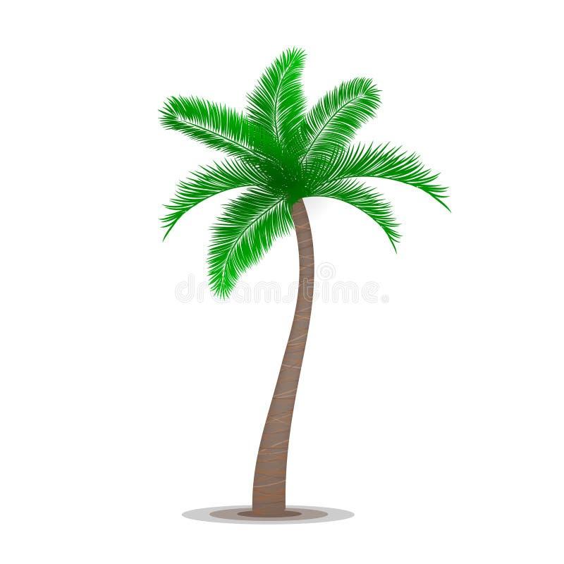 热带棕榈树标志 库存例证
