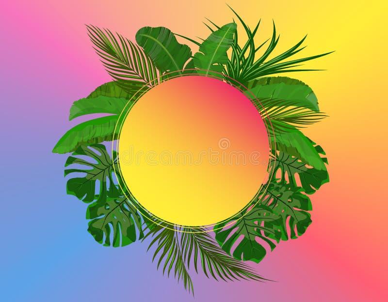 热带棕榈树绿色叶子  Monstera,龙舌兰,香蕉 做广告的,公告地方 ?? 皇族释放例证