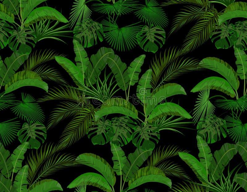 热带棕榈树绿色叶子  Monstera,龙舌兰,香蕉 无缝在黑背景 ?? 库存例证