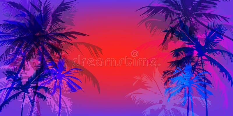 热带棕榈横幅 向量例证