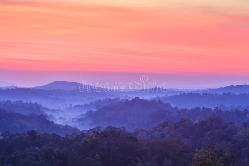 热带森林和蓝色山风景风景  免版税库存照片