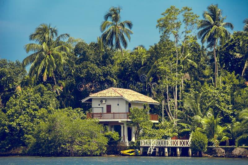 热带森林围拢的大厦斯里兰卡 免版税图库摄影