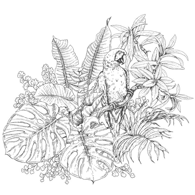 热带植物和坐的金刚鹦鹉 皇族释放例证