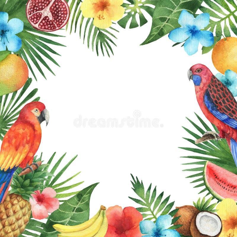 热带植物和鸟的水彩框架 向量例证