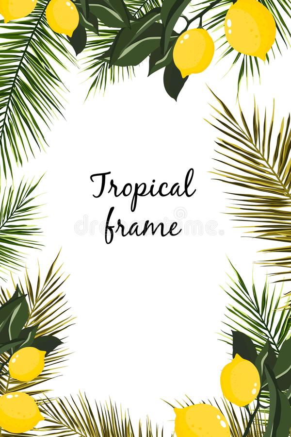 热带植物手拉的分支和叶子  与空间的自然绿色背景文本的 向量例证