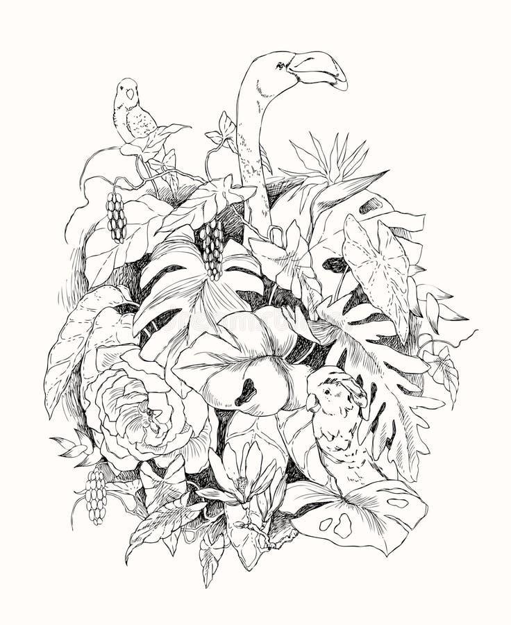 热带植物手拉的分支和叶子  与鸟的单色花卉束 火鸟,鹦鹉,美冠鹦鹉 投反对票 皇族释放例证
