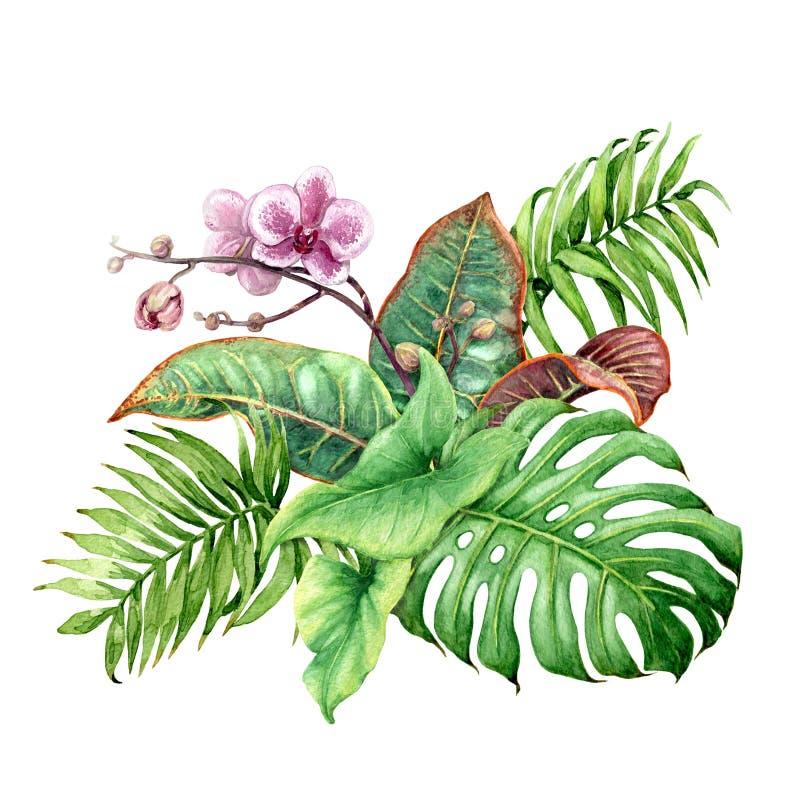 热带植物捆成一束与桃红色兰花 库存例证