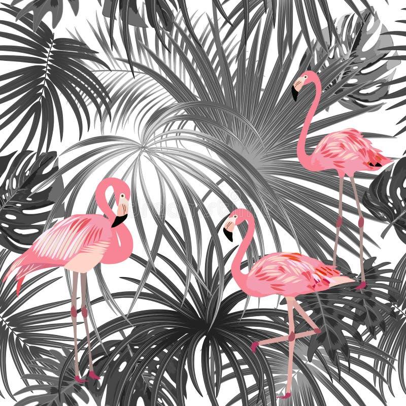 热带植物无缝的样式、桃红色火鸟和棕榈树黑白热带叶子  库存例证