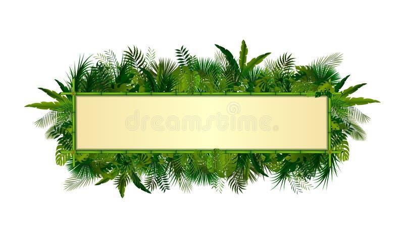 热带植物背景 与空间的长方形花卉框架在概念竹子的文本的 皇族释放例证