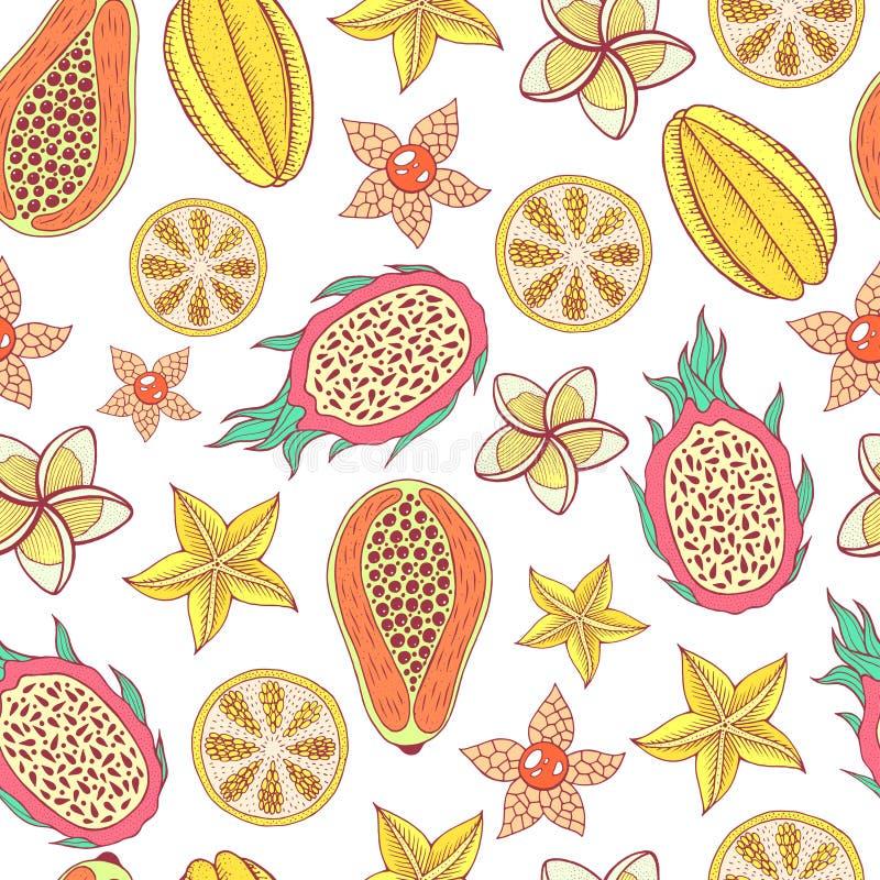 热带水果无缝的样式 五颜六色的图表食物backgroun 皇族释放例证