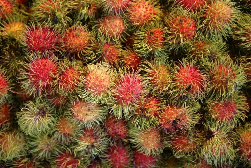 热带水果红毛丹 免版税图库摄影