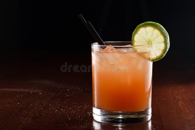 热带汁液鸡尾酒 免版税库存照片