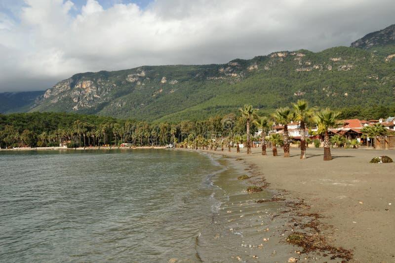 热带河的海岸线 免版税库存图片