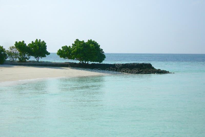 热带海岛沙滩全景  马尔代夫,印度洋 库存照片