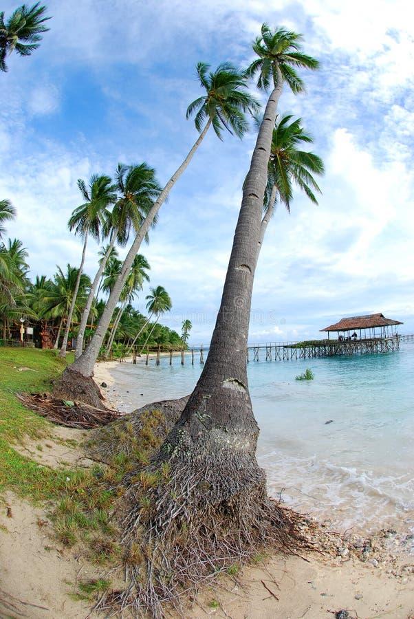 热带海岛逃走 图库摄影