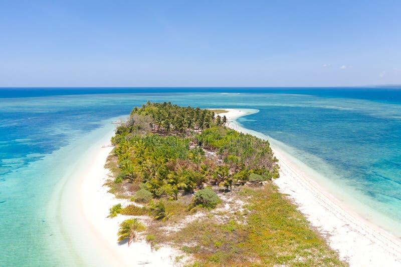 热带海岛Canimeran 在荒岛上的白色沙滩 免版税库存图片