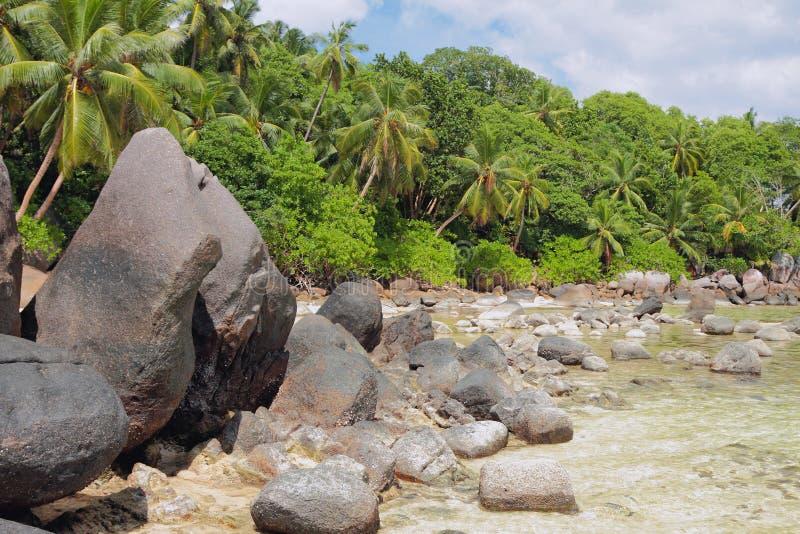 热带海岸的海岛 皇家的Anse, Mahe,塞舌尔群岛 免版税库存照片