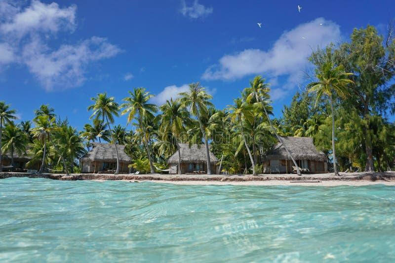 热带海岸线平房和椰子树波里尼西亚 库存照片