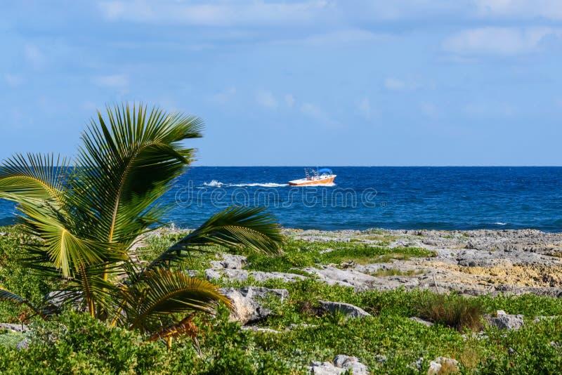 热带海岸线的风景与棕榈树、海和蓝天的 赛跑通过海的汽船 免版税图库摄影