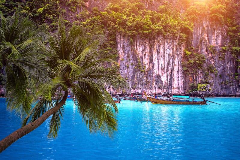 热带海滩和长的小船有棕榈树的在披披岛, Krabi泰国 免版税库存图片