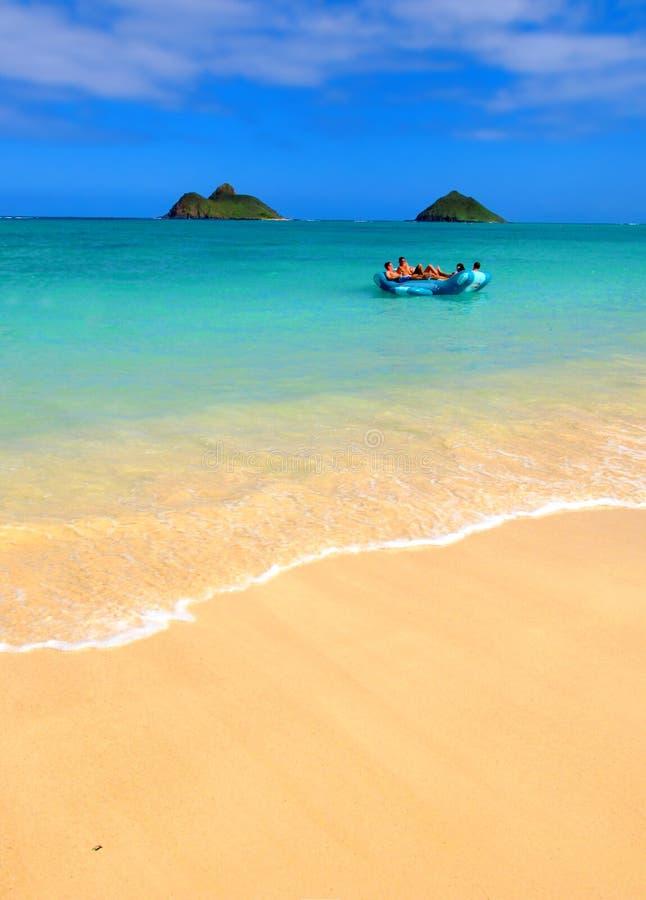 热带海滩梦想的图标 库存图片