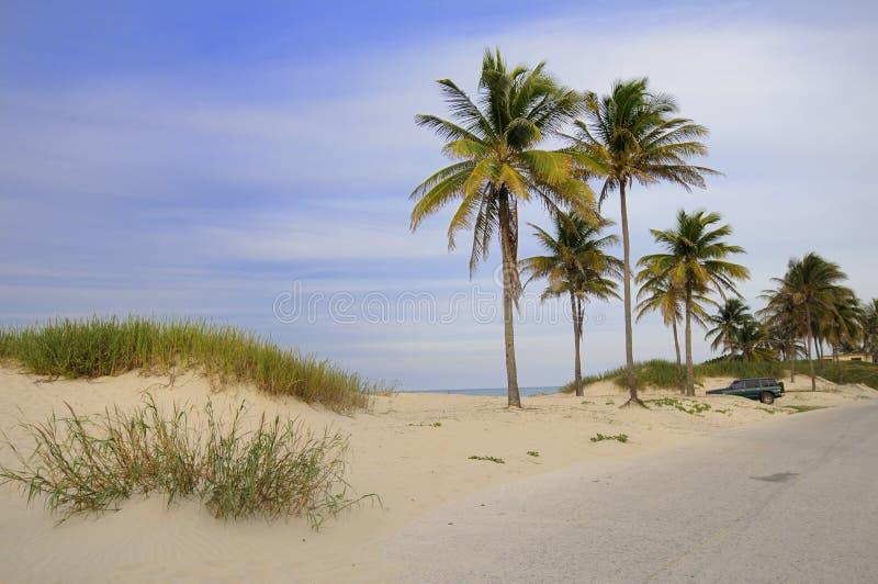 热带海滩的古巴人 免版税图库摄影