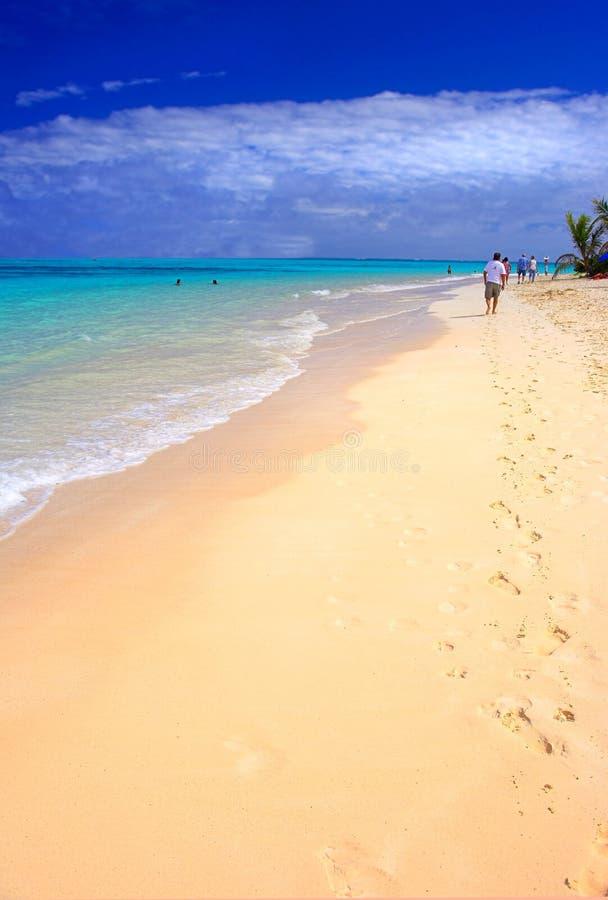 热带海滩的图标 免版税图库摄影