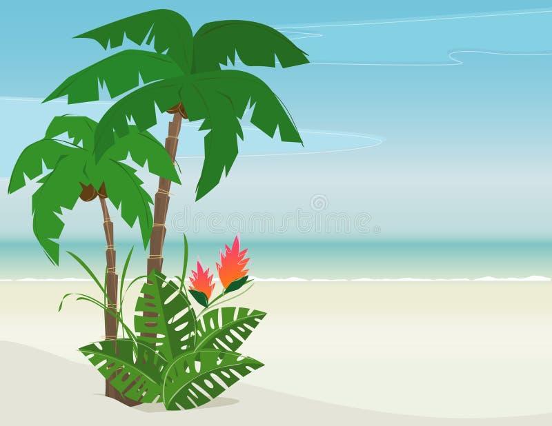 热带海滩的天堂 向量例证