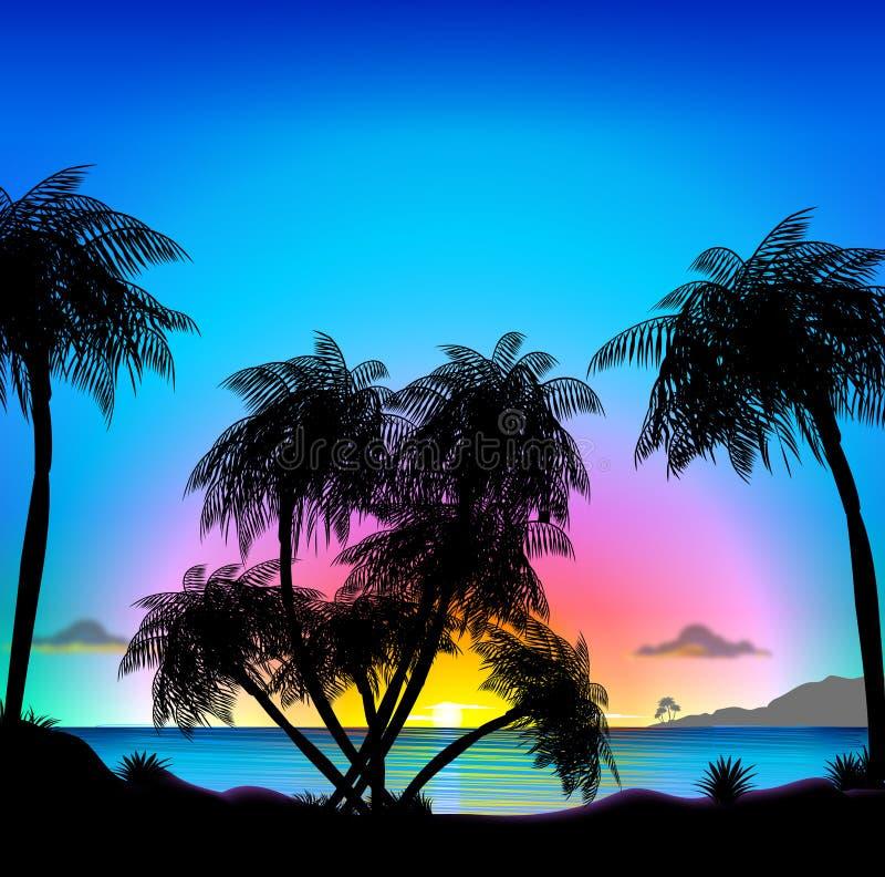 热带海滩的日落 皇族释放例证