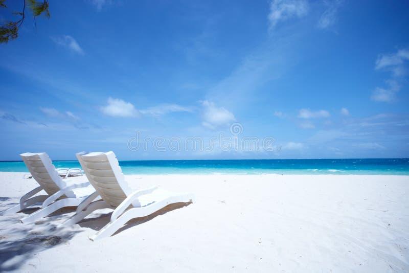 热带海滩睡椅的休息室 库存图片