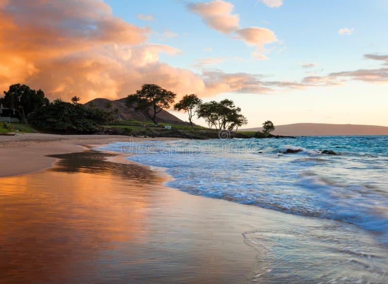 热带海滩 免版税库存照片