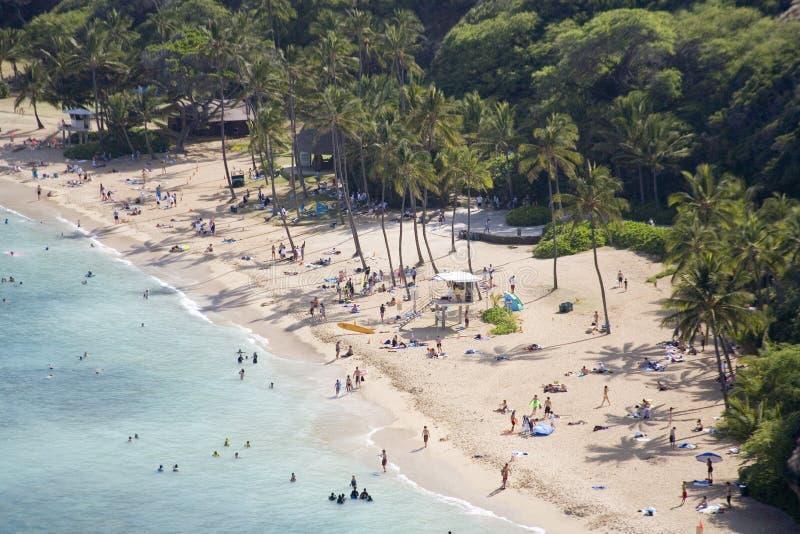 热带海滩h64的天堂 免版税库存图片