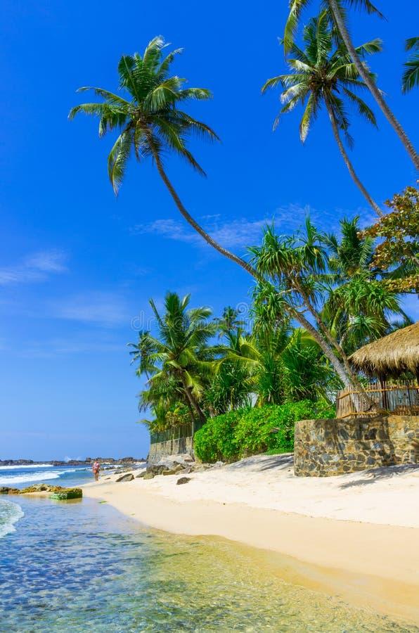 热带海滩在斯里兰卡 免版税库存图片
