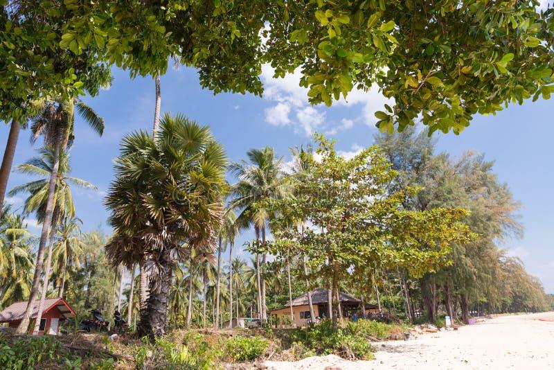 热带海滩在Krabi 库存照片