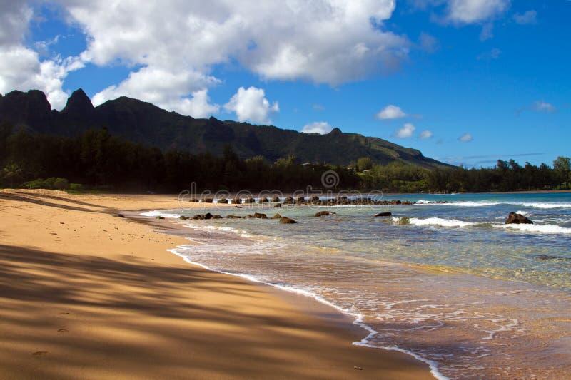 热带海滩场面考艾岛夏威夷 免版税库存图片