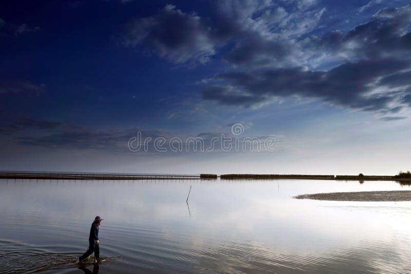 热带海滩的渔夫在晚上天空 库存图片