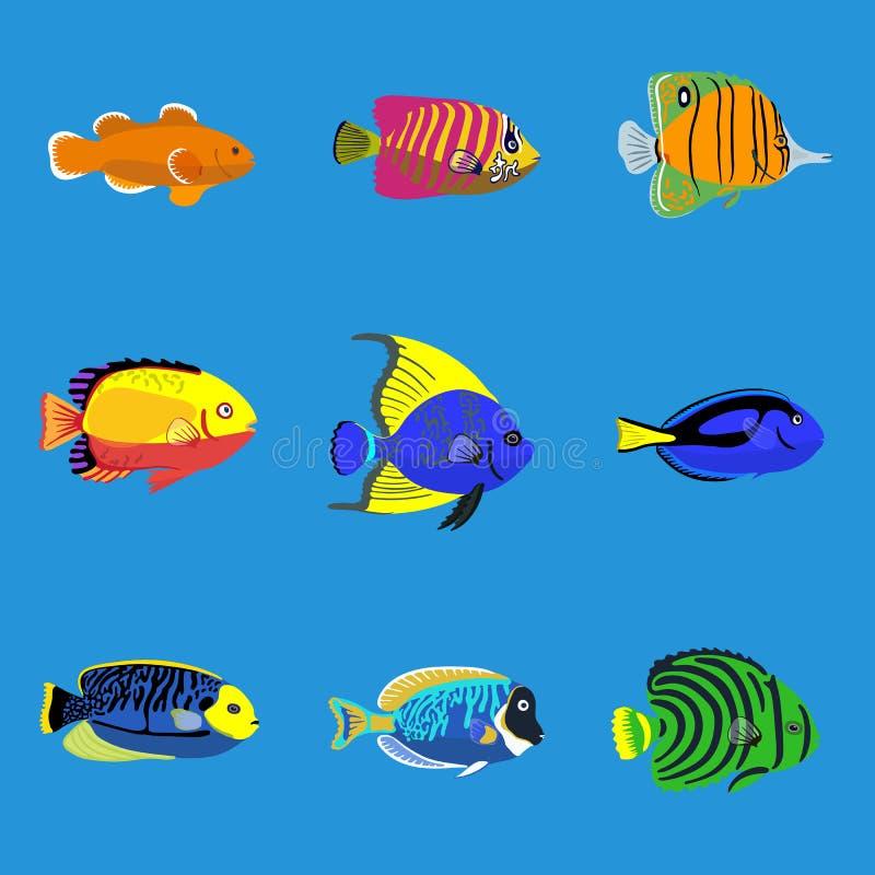 热带海洋鱼,传染媒介例证集合 库存例证