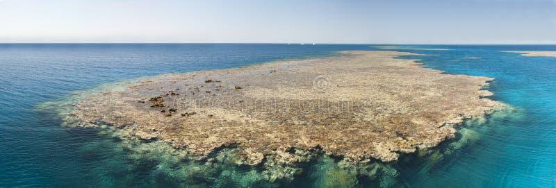 热带珊瑚礁 图库摄影