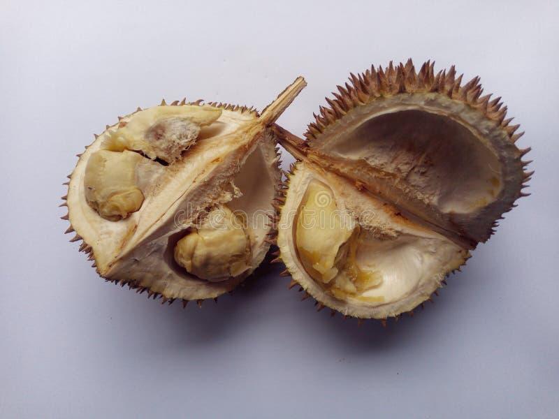 热带留连果果子查出的照片 图库摄影